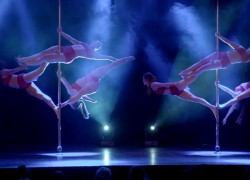 Pole Evolution Dance Company presents 'ELEMENTS' - Opening Act 'Firebirds'